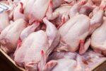 تشکیل صفهایی طولانی در اردبیل که مرغ را با کرونا دست به دست میکنند