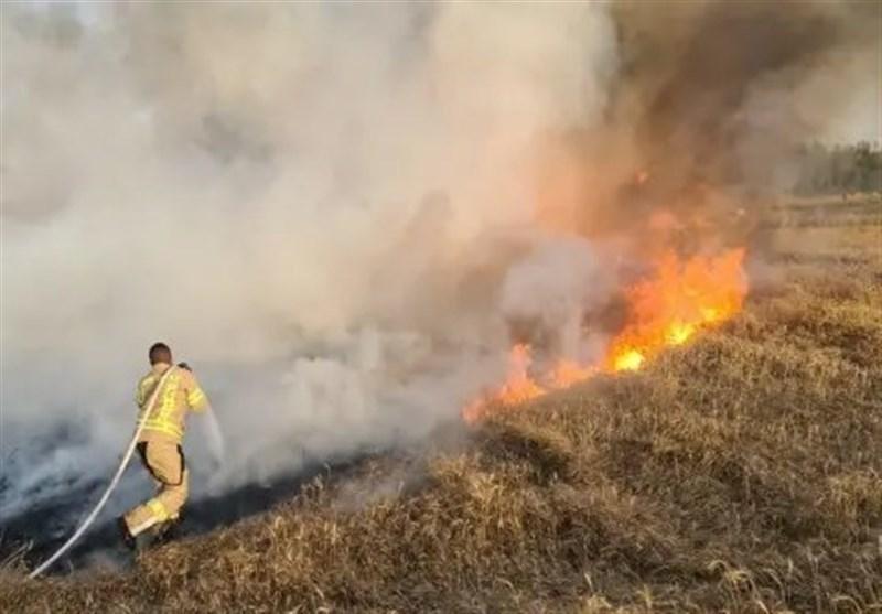 مهار آتشسوزی در جنگل نمین